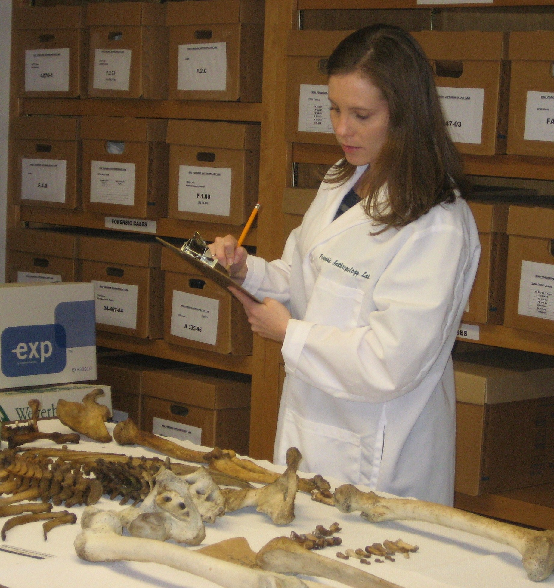 forensic anthropology essays As part of the professionally accredited bsc (hons) forensic anthropology at  liverpool john moores university you will be actively involved in excavating.
